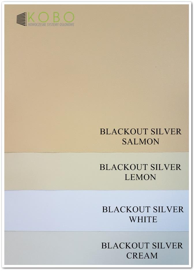 blackout-silver-1-www
