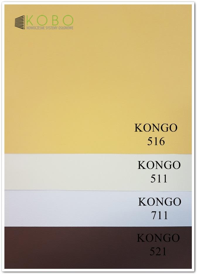 kongo-1-www