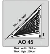 AO 45