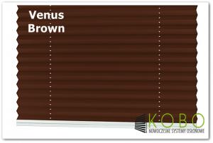 Plisa Venus braz logo 1