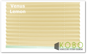 Venus Lemon logo 1