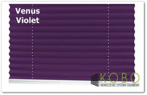 Venus violet logo 1