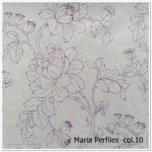 10_Maria_Perfiles_10
