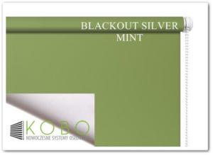 Blackout Silver mint kobo